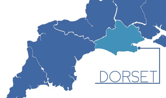 Dorset plans £20m shared record scheme