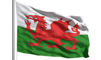 Half of Welsh referrals now e-referrals