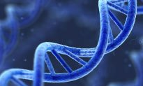 Southampton takes forward genomics