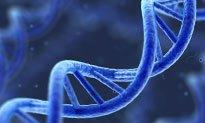 Southampton takes forward genomics