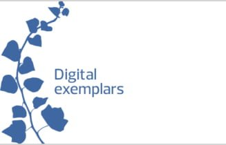 global digital exemplar