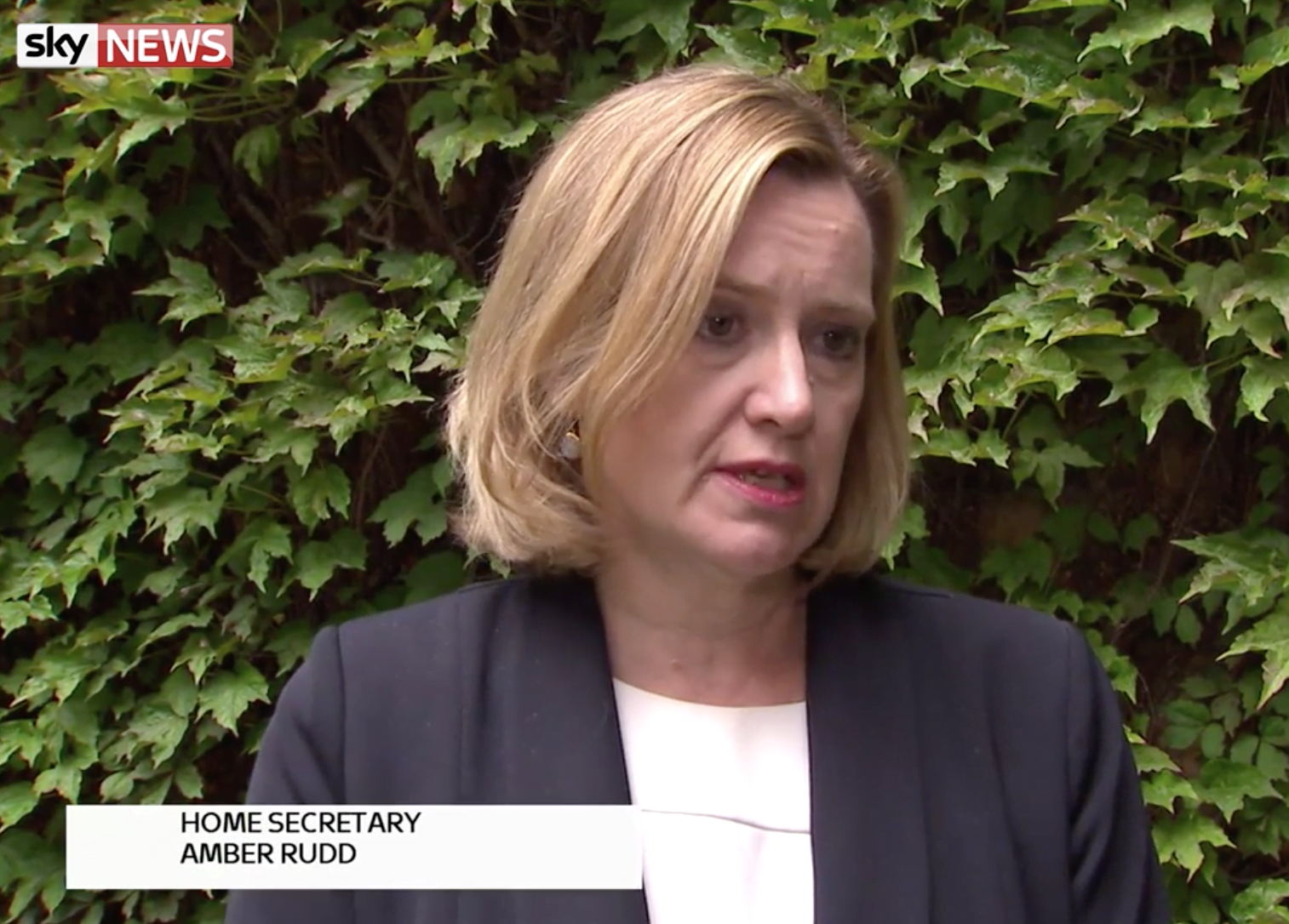 Home Secretary Amber Rudd has lead givernment's response to cyber attacks