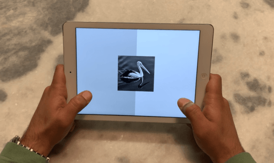 A person using Cognetivity's iPad test